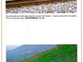 Folleto AQM Abonos Químicos de Montaña IV